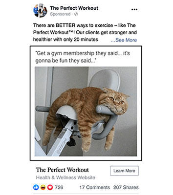 Facebook post engagement ad showing a cat slumped on gym equipment