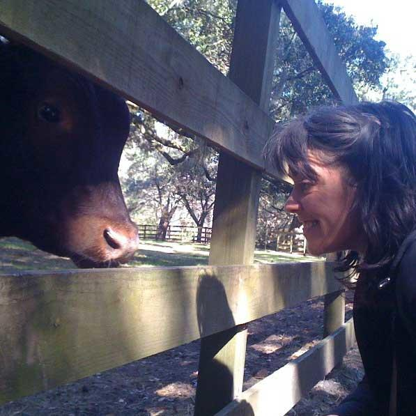 """Lynda says """"hi!"""" to the cow. Now that's great content!"""